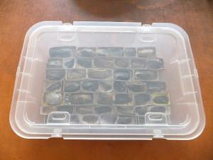 Boite transparentes à échantillons
