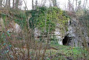 La Roche à Pierrot - Saint-Césaire (17)