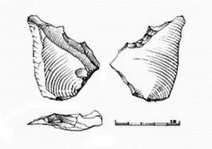 Pièce denticulée du Moustérien