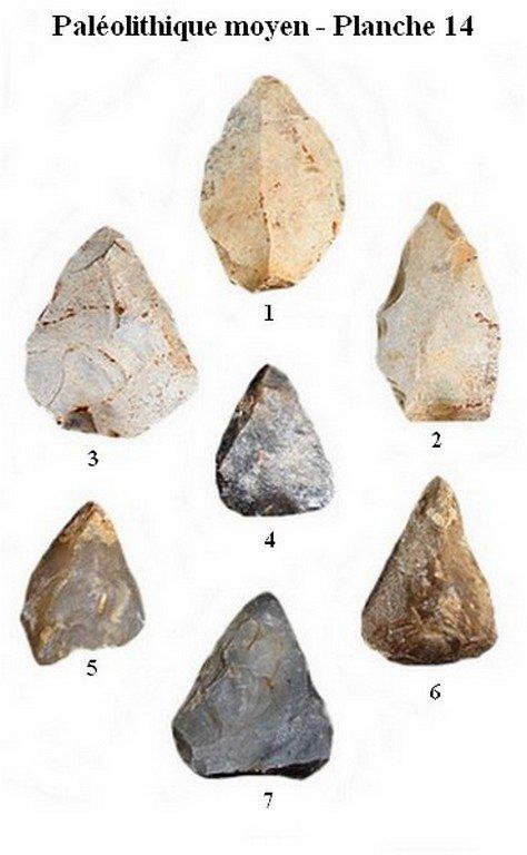 Paléolithique moyen 14